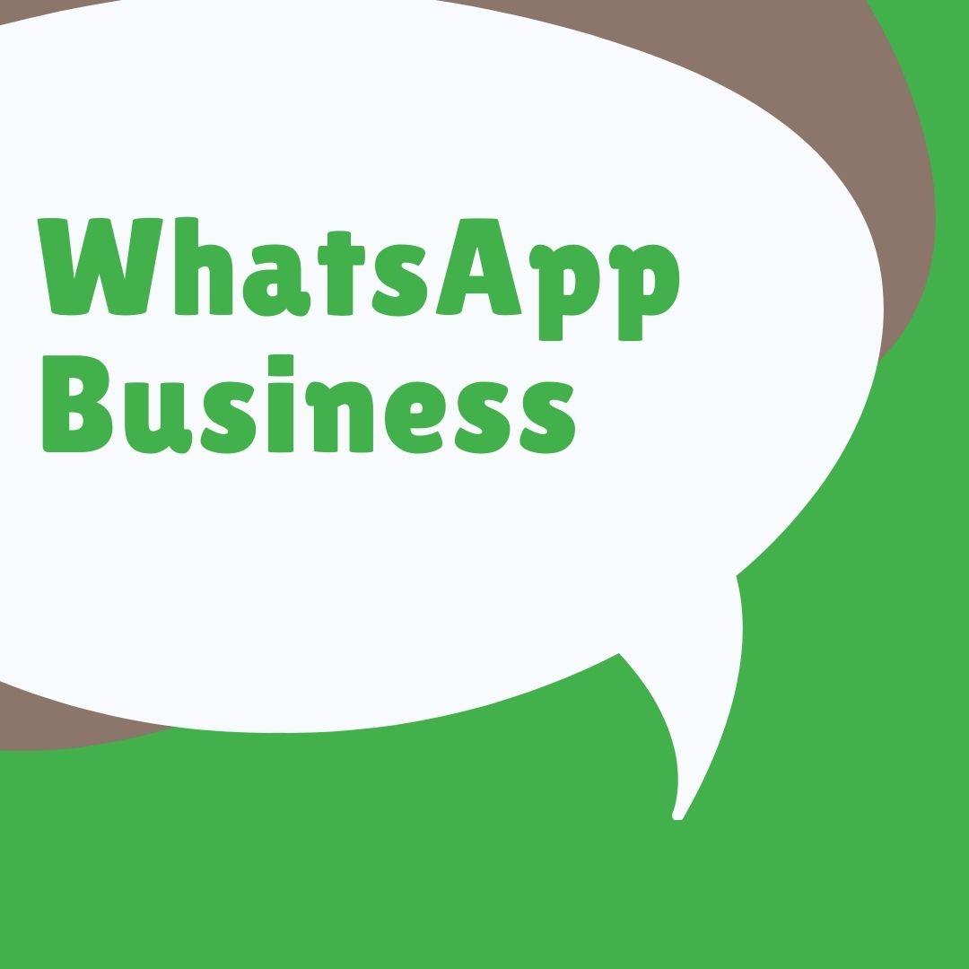 WhatsApp para negocio
